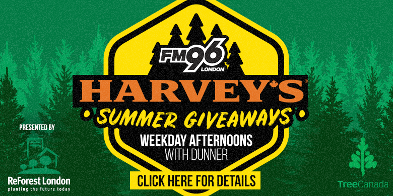Harvey's Summer Giveaways with Dunner